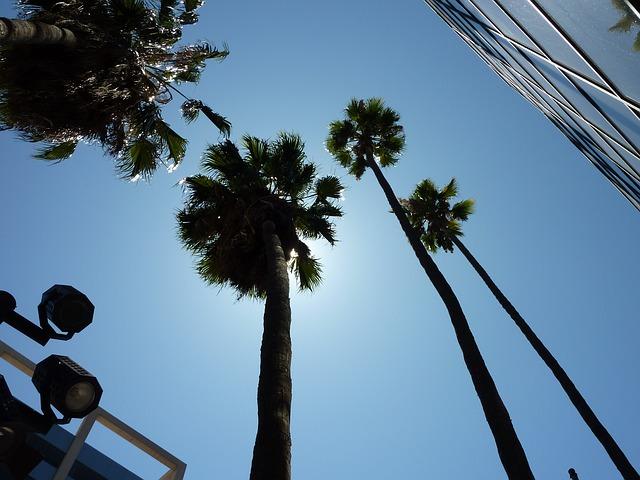 studia LA.jpg